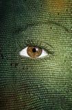 Textura da pele de serpente pintada na cara Fotos de Stock Royalty Free