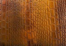Textura da pele do crocodilo Foto de Stock Royalty Free