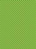 Textura da pele do dragão Imagens de Stock