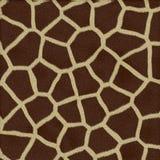 Textura da pele do Giraffe Foto de Stock