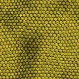 Textura da pele do réptil Imagens de Stock