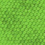 Textura da pele do réptil Foto de Stock Royalty Free
