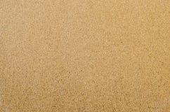 Textura da placa da cortiça Imagem de Stock Royalty Free