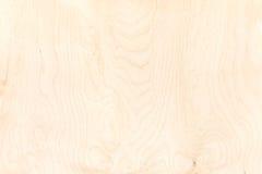 Textura da placa da madeira compensada backgr natural alto-detalhado do teste padrão Fotos de Stock Royalty Free