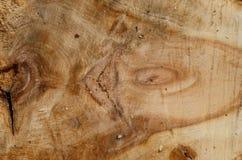 A textura da placa de madeira, com um teste padrão bem defenido imagens de stock royalty free
