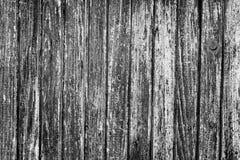 Textura da porta de madeira velha Imagens de Stock