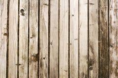 Textura da porta velha Fotos de Stock