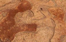 Textura da rocha de Brown Imagem de Stock Royalty Free