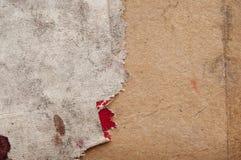 Textura da serapilheira Fotos de Stock