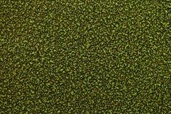 Textura da superfície de metal pintada Foto de Stock Royalty Free