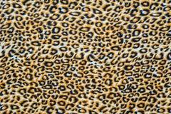 A textura da tela ascendente da cópia do fim listrou o leopardo imagens de stock