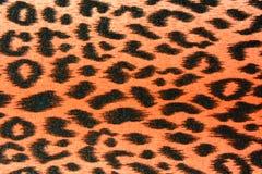 A textura da tela da cópia listra o leopardo para o fundo Imagens de Stock