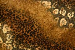 A textura da tela da cópia listrou o leopardo para o fundo Foto de Stock Royalty Free