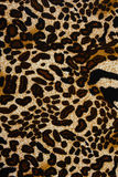 A textura da tela da cópia listrou o leopardo para o fundo Fotos de Stock