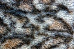 A textura da tela de lãs com um teste padrão Imagem de Stock