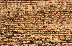 Textura da telha Imagens de Stock Royalty Free