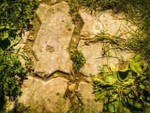 Textura da telha Fotos de Stock