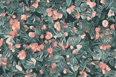 Textura das flores, de plantas exóticas tropicais florais e de flores do sumário ilustração stock