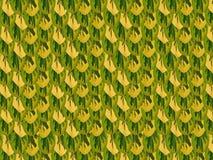 Textura das folhas coloridas dos arbustos Foto de Stock