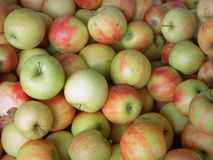 Textura das maçãs de Jonagold Foto de Stock Royalty Free