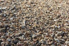 Textura das pedras Fotos de Stock
