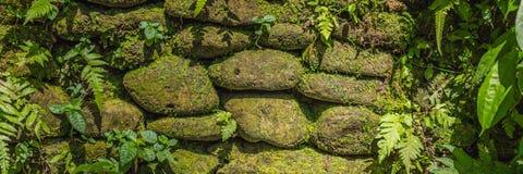 Textura das pedras e do musgo velhos na BANDEIRA do estilo de Bali, formato longo Imagem de Stock