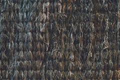 Textura das varas dentro de uma cerca da escova Fotografia de Stock