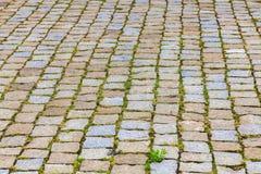 Textura de adoquines con la hierba Imagenes de archivo
