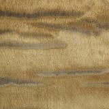 Textura de alta resolución imagenes de archivo