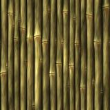 Textura de bambú ilustración del vector