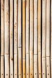 Textura de bambú Foto de archivo libre de regalías