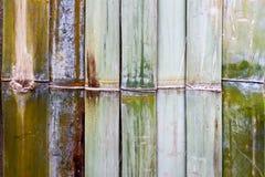 Textura de bambú de la pared Foto de archivo libre de regalías