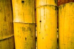 Textura de bambú del fondo de la cerca con marea de la cuerda el al frente y la parte inferior Fotos de archivo