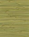 Textura de bambú del papel pintado Fotografía de archivo libre de regalías