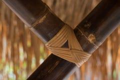 Textura de bambu fotos de stock royalty free