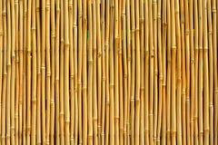 Textura de bambu Fotografia de Stock Royalty Free