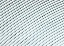 Textura de bambu branca Fotos de Stock