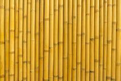 Textura de bambu do fundo da cerca Foto de Stock