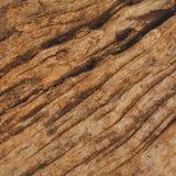 Textura de Brown del fondo de madera Foto de archivo libre de regalías