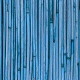 Textura de cañas o del bambú para el fondo Imágenes de archivo libres de regalías