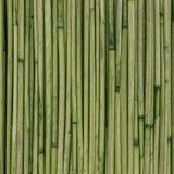 Textura de cañas o del bambú para el fondo Fotografía de archivo libre de regalías