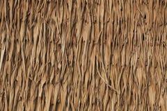 A textura de cobre com sapê o telhado Imagens de Stock Royalty Free
