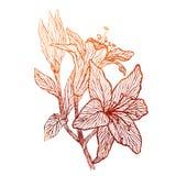 Textura de cobre ornamental floral Foto de archivo