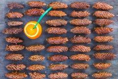 Textura de cones da madeira de pinho Cocktail alaranjado do lazer do humor fotografia de stock