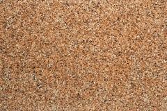 Textura de Corkboard Fotografia de Stock Royalty Free