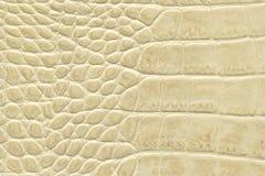 Textura de couro bege Imagem de Stock