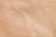 Textura de couro de Brown Foto de Stock