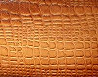 Textura de couro de Brown com testes padrões Fotos de Stock Royalty Free