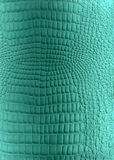 Textura de couro do réptil fotos de stock
