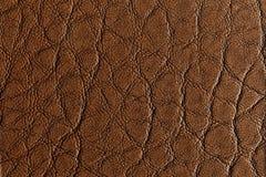 Textura de couro marrom média Imagem de Stock
